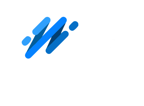 The IoT Survey 2019