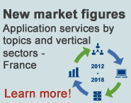 New market figures - Application services by topics and vertical sectors - France