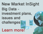 New Market InSight - Big Data - investment plans, issues and challenges